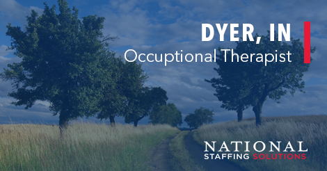 Occupational Therapy Job in Dyer, Indiana Image